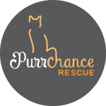 Purrchance Rescue Logo